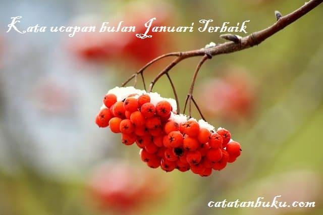 Kata Ucapan Bulan Januari Kata Bijak Harapan Dan Do A