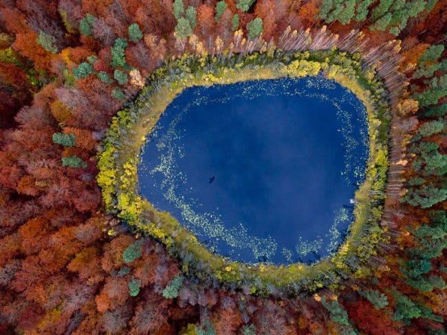 Danau di Pomorskie,Polandia saat musim gugur.